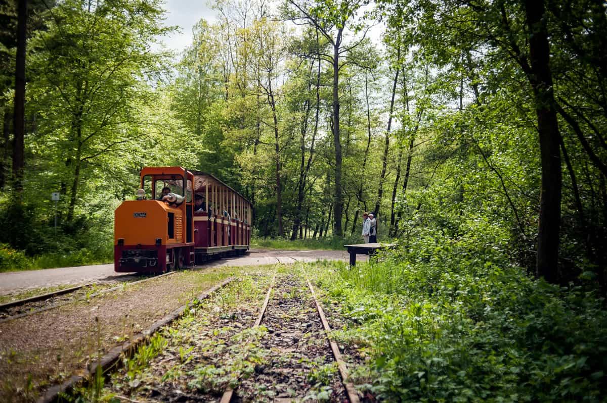 Lokomtive und Wagen am Bahnhof im Grünen