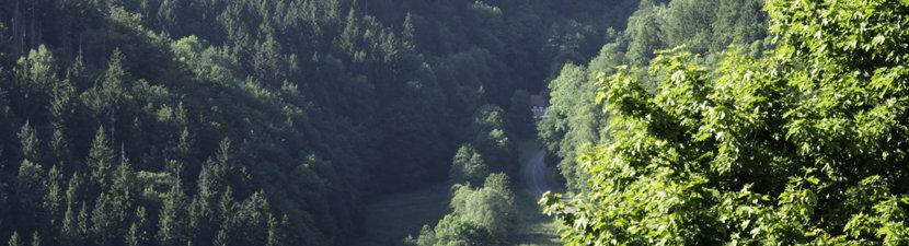 Ausblick von der Burg Hohnstein